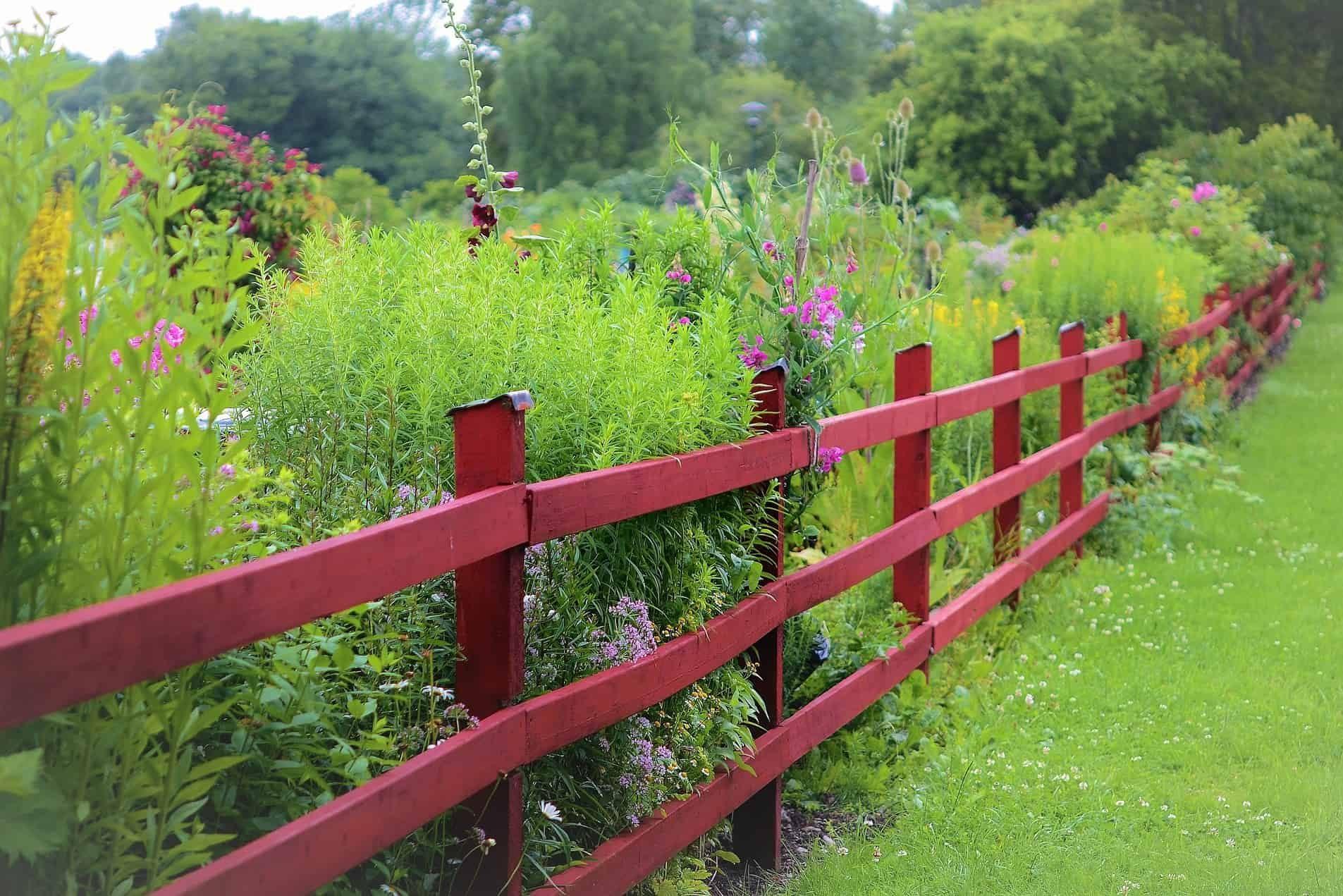 20 Diy Garden Fence Ideas That Will Make Your Garden Irresistible Finding Good Living